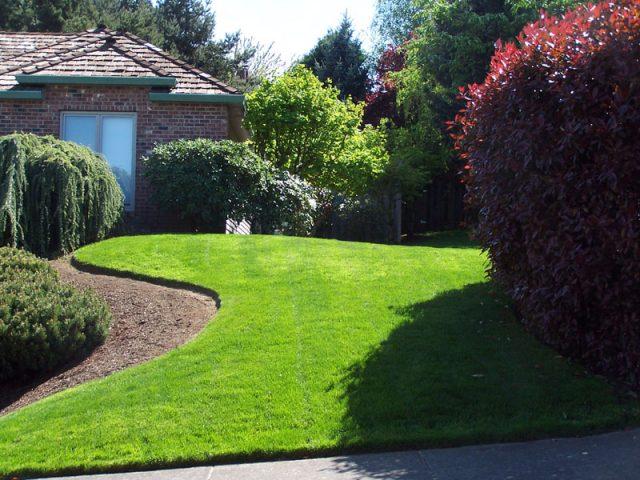 Yard Maintenance Beaverton Oregon 3