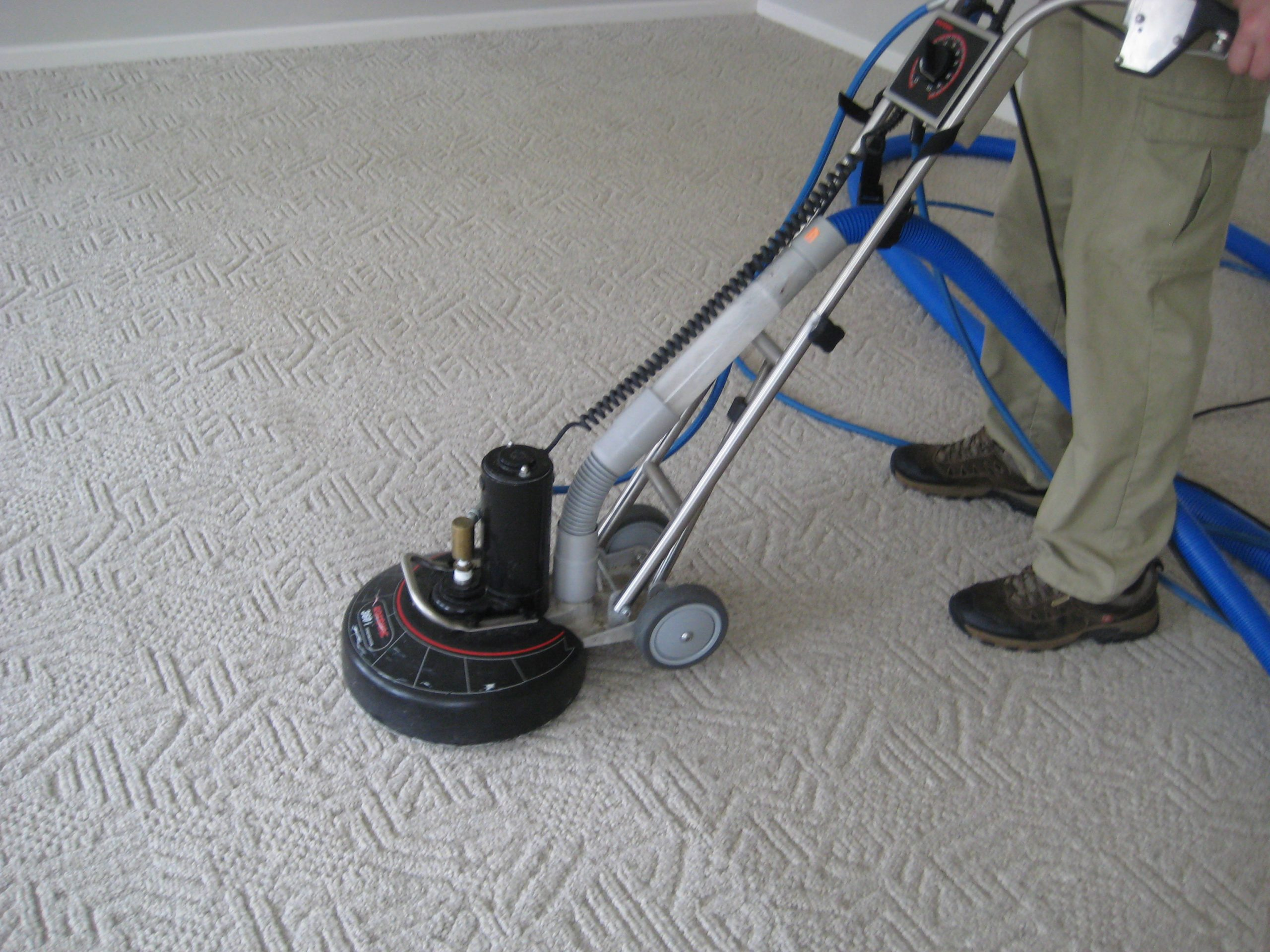 carpet cleaninng