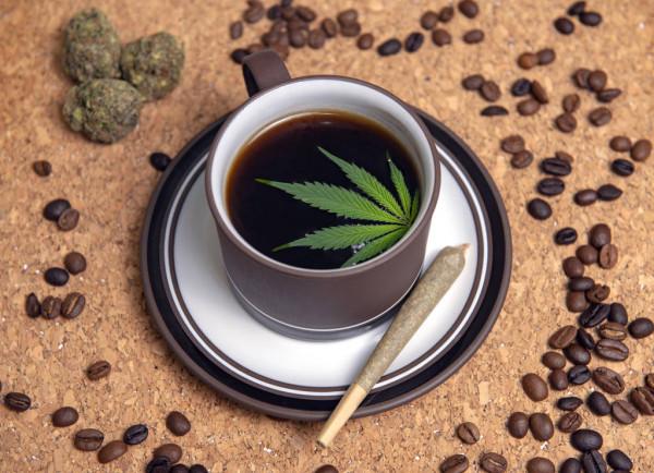 cbd-coffee-cup