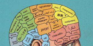 I Picked the Language—Where Do I Start?