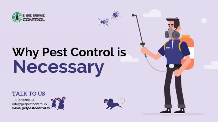 Why Pest Control Is Necessary