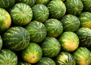 Watermelon- worst fruit for diabetes