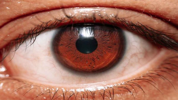 Symptoms-of-Blurry-Vision-Causes-and-Treatments