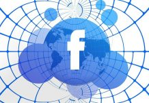 facebook feed embed for wordpress