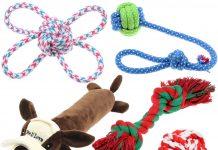 Hawaiian dog toys